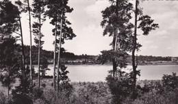 39 – CLAIRVAUX LES LACS – Le Petit Lac – Circulée 1955 - Clairvaux Les Lacs