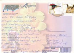 Portugal Vögel Mi. 2642 Vogel + 0,54 € Vogel Eule TGST - Postkarte Nach Deutschland - Covers & Documents