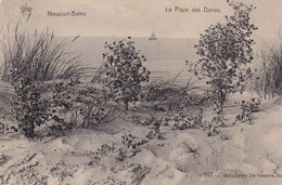 Flore Des Dunes Timbre De 1910 - Nieuwpoort