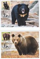 Russia 2020 2941-2942 Mih 2717-2718 Russia 12 2020 NO EXTRA FEES Fauna European Brown Bear Asian Black Bear - Tarjetas Máxima