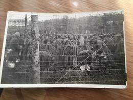 Carte Photo Prisonniers Allemands Octobre 1917 1914-18 - 1914-18