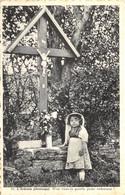 L'Ardenne Pittoresque - Petite Ardennaise - Zonder Classificatie