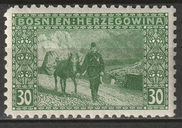 Bosnia 1906 Sc 38a  MLH* Perf 9.25 Torn Corner - Bosnia And Herzegovina