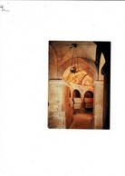 C.P. France (84) APT La Cathédrale La Crypte - Apt