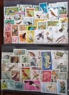 39464. Gran Lote Coleccion + 270 Sellos Aves, Pajaros, Birds, Oiseaux De Todo El Mundo º - Colecciones & Series