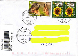 Romania 2014, Marmots / Marmottes / Sunflowers / Tournesols On A Circulated Cover. - Rodents