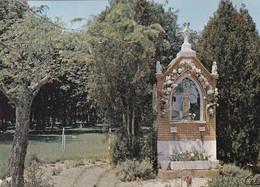 PIBRAC   (Haute-Garonne) Le Miracle Des Roses - Otros Municipios