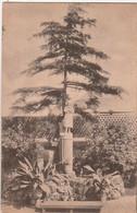 ROME. - Séminaire Français. 18 - Sur Les Terrasses, Statue De Sainte-Jeanne D'Arc - Other Monuments & Buildings