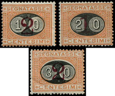 * ITALIE - Taxe - 22/24, Gomme Non Originale (Sas. 17/19) (cote*) - Portomarken