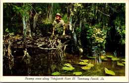 Louisiana Tammany Parish Swamp Scene Along Tchefuncte River - Other