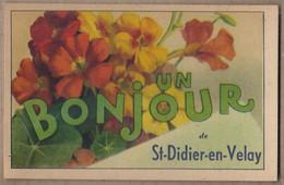 CPA 43 - SAINT-DIDIER EN VELAY - Un Bonjour De St-Didier-en-Velay - TB CP FANTAISIE Avec FLEURS Sur Le Village - Saint Didier En Velay