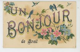 """BREIL SUR ROYA - Jolie Carte Fantaisie Hirondelles Et Fleurs """"Un Bonjour De BREIL """" - Breil-sur-Roya"""