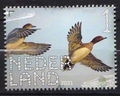 Nederland - Beleef De Natuur - 22 Februari 2021 - De Onlanden - Smient - MNH - Ungebraucht