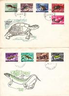 Yougoslavie - Lettre De 1962 ° - Oblit Beograd - Serpents - Tortues - Grenouilles - Lézards - Valeur 18 Euros - Briefe U. Dokumente