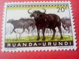 "RUANDA-URUNDI (REP. DU BURUNDI) - Timbre 1960 : Animaux ""Bubalus"" - 1948-61: Neufs"