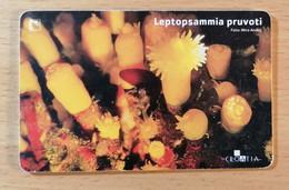 Vintage Phone Card Telefon Karte Croatia HT Leptopsammia Pruvoti Excellent Cond. 2007. - Telephony