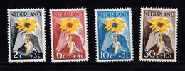 Nederland 1949 Nvph Nr 538 - 541 , Mi Nr 521 - 524, Nederland Helpt Indie, Zonnebloem, Postfris - Unused Stamps