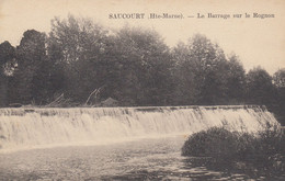 SAUCOURT (Haute-Marne): Le Barrage Sur Le Rognon - Sonstige Gemeinden