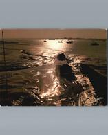Coucher De Soleil - Barge à Huitres Et Chalutiers - 1985 - Pesca