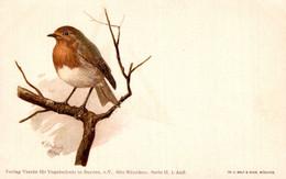55969- Verein Für Vogelschutz Bayern Rotkehlchen - Birds