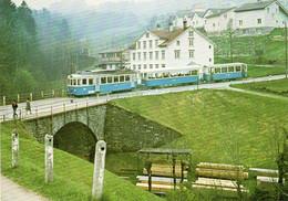 Trogenerbahn-landgemeinindezug Mit Dem BDe 4/4 8 Train De La Communauté Rurale De Trogenerbahn - Other