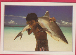 MALDIVES ISLANDS REQUIN A POINT BLANCHE WHITE TIPPED SHARK CARRIED BY A YOUNG CHILD - Maldives