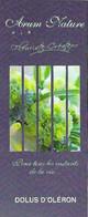 Carte De Visite - Arum Nature - Fleuriste-Créateur - Dolus D'Oleron [17] - Cartes De Visite