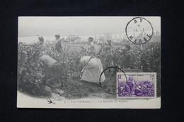 FRANCE - Carte Maximum En  1941 - Vendanges - Récolte Du Raisin - L 89508 - 1940-49