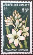 R1507/151 - 1969 - COMORES - N°27 NEUF** - Unused Stamps