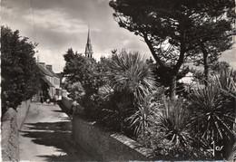 Ile De  Batz Jardins Longeant La Rue Principale Du Bourg - Ile-de-Batz