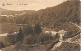 DOHAN/LA COTE DU MOULIN/NELS - Bouillon