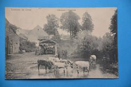 Emptinne 1909: L'abreuvoir - Hamois