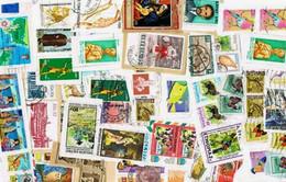 Africa KILOWARE MissionBag 1 KG (2LB-3oz) Stamp Mixture - Lots & Kiloware (mixtures) - Min. 1000 Stamps