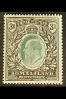 1904 3r Green And Black, SG 43, Very Fine Mint. For More Images, Please Visit Http://www.sandafayre.com/itemdetails.aspx - Somaliland (Herrschaft ...-1959)