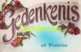CPA WESTERLO WESTERLOO GEDENKENIS - Westerlo