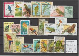Papegaaien - Perroquets - Parrots - Noord- & Zuid-Amerika 22 Zegels Gest./obl./used - Parrots