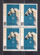 POLAND 1963 POLISH HORSES 6.50 Zloty BLOCK Of 4 MNH - Ongebruikt