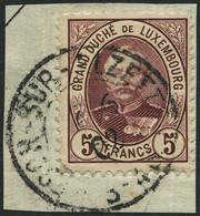 LUXEMBURG 66B BrfStk, 1893, 5 Fr. Dunkellilarot, Prachtbriefstück, Mi. 90.- - Officials