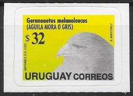 Uruguay 2000 Mi.No. 2521   Birds Of Prey Vogel Black-chested Buzzard-eagle 1v MNH**   11,00 € - Uruguay