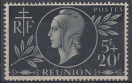 N° 251 - X X - ( C 206 ) - Unused Stamps