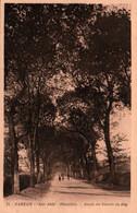 CPA - CARHAIX - Route Du Moulin Du Roy - Edition G.Artaud - Carhaix-Plouguer