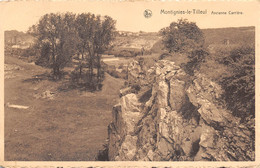 Montigny-le-Tilleul - Ancienne Carrière - Montigny-le-Tilleul