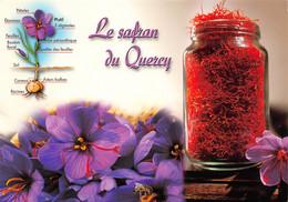 Recette  SAFRAN Du Quercy  CAHORS  35 (scan Recto-verso)MA2293 - Küchenrezepte