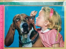 Kov 9-40 - Children, Enfant, Dog, Chien - Other