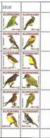 MDB-BK8-617 MINT ¤ SURINAME 2010 12w In Serie ¤ - BIRDS OF SURINAME - OISEAUX - PAJAROS - VOGELS - VÖGEL - - Parrots