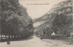 C P A ANIMEE  NANTUA CHAMP DE FOIRE  CIRCULEE  1905 - Nantua