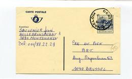 13 Fr Postkaart Kluut - Stempel GINGELOM A 3890 - Cartes Postales [1951-..]