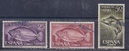 SAHARA 1964 - DIA DEL SELLO - PECES - EDIFIL Nº 222/224 USADOS - Sahara Español