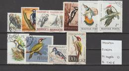 Spechten - Piverts - Woodpeckers - Europa 11 Zegels Gest./obl./used - Piciformes (pájaros Carpinteros)