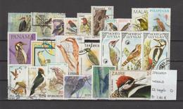 Spechten - Piverts - Woodpeckers - Wereld 23 Zegels Gest./obl./used - Piciformes (pájaros Carpinteros)